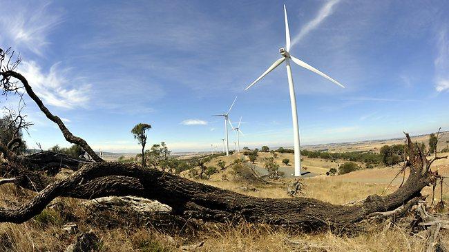 248145-wind-farm-main
