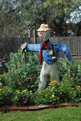 scarecrow the Hub Plot