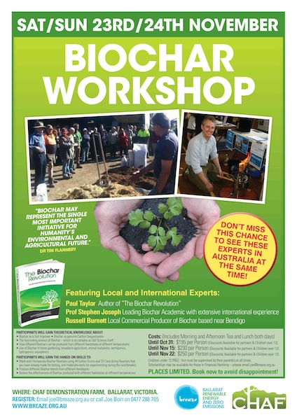 Biochar Workshop A4 Poster (e)