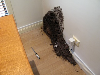Termitesbehindthedesk